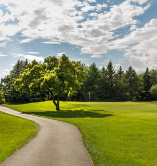 643-obm_golf_2016-2819